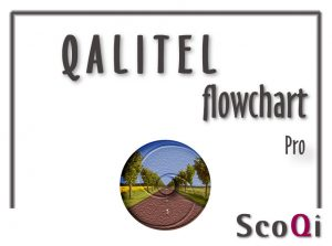 Read more about the article QALITEL flowchart – Pro Edition at the price of 49€
