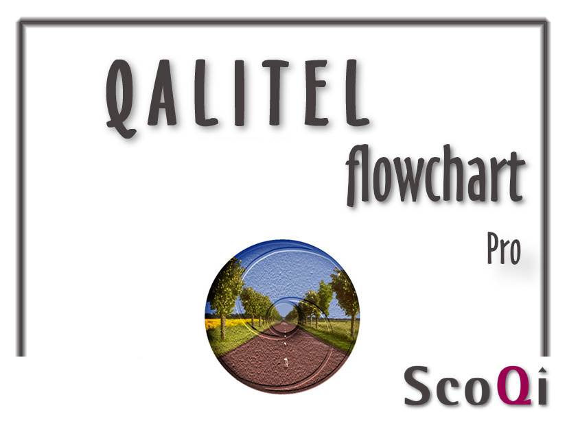 qalitel_flowchart_quality-software-pro-edition