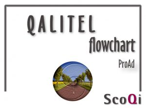 Read more about the article QALITEL flowchart – Proad edition at the price of 90€ or 5€/month