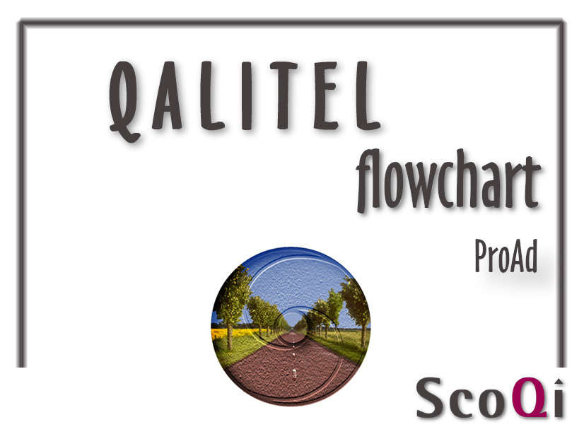 QALITEL flowchart – Proad edition at the price of 90€ or 5€/month