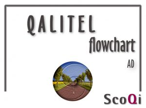 Read more about the article QALITEL flowchart – Standard Edition at the price of 9,98€