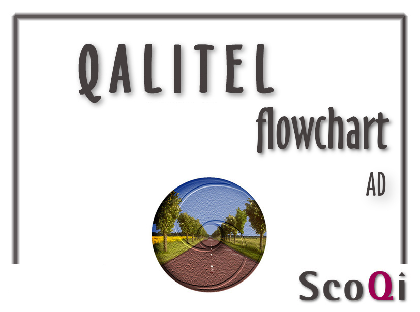 QALITEL flowchart – Standard Edition at the price of 9,98€